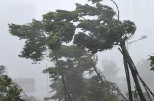 台风3.jpg