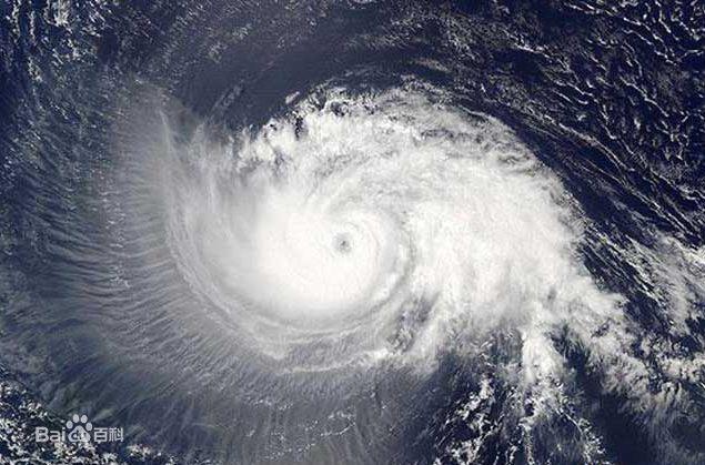 台风2.jpg